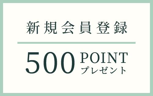 新規会員登録 500point プレゼント