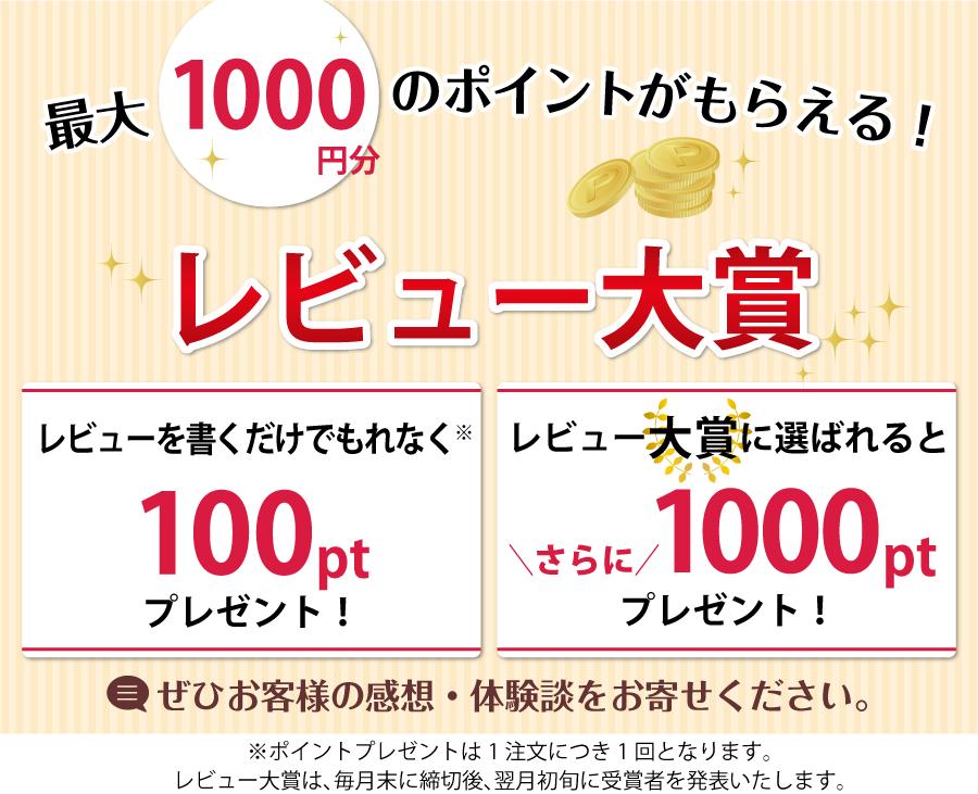 毎月最大1000円分のポイントが当たる!レビュー大賞